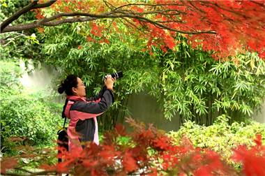Autumn views in Wuxi