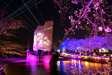 View cherry blossoms at night in Yuantouzhu