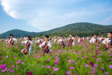 Summer flowers adorn Nianhuawan