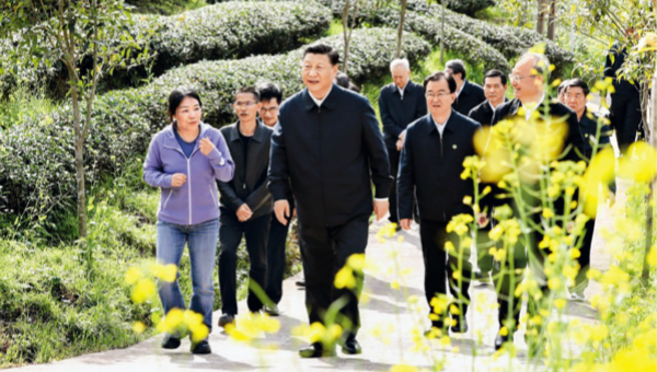 Xi's article on China's new development stage to be published