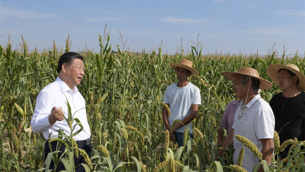 What's high on Xi's agenda for rural affairs