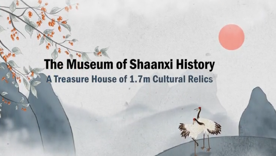 The Museum of Shaanxi History: A Treasure House of 1.7m Cultural Relics