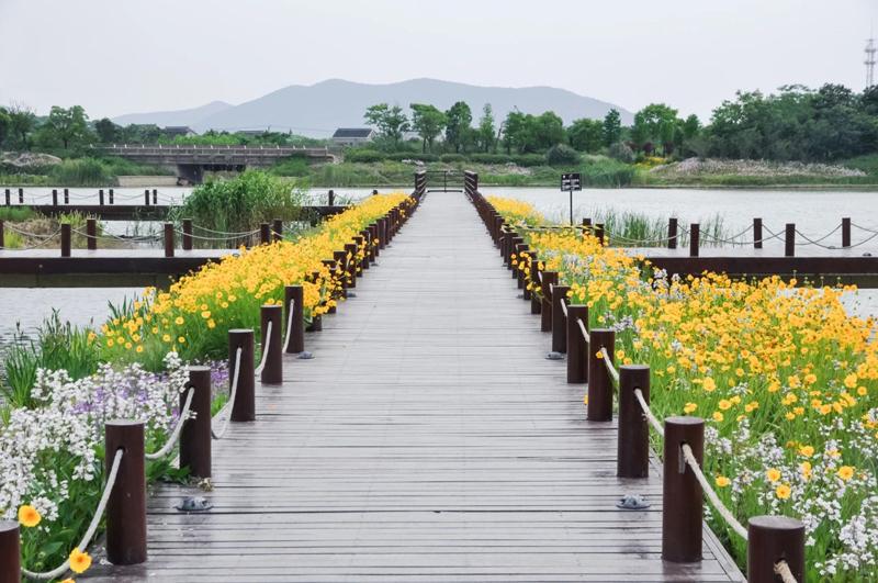 西京湾4.jpg