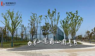 运动公园1-315.jpg