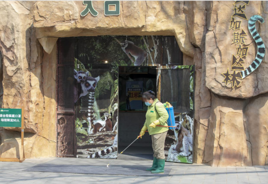 Beijing Wildlife Park resumes operations