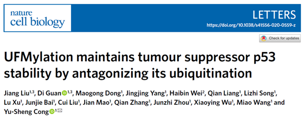 Chinese research group identifies UFMylation as promising therapeutic target in cancer