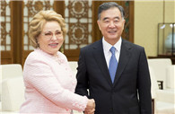 Wang Yang meets Russian Federation Council speaker