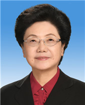 Li Bin (concurrent)