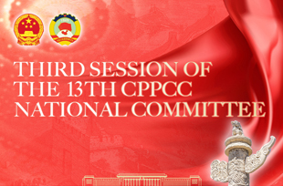 CPPCC members meet for consultations and discussions
