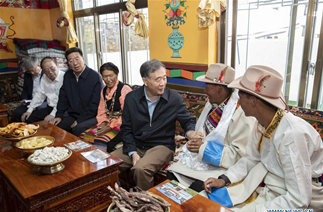Wang Yang stresses consolidation of Tibet's enduring peace, stability