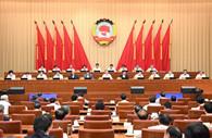 Wang Yang stresses improving national governance