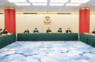 Wang Yang stresses stronger sense of community for Chinese nation