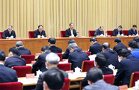 Wang Yang stresses concerted efforts for fully building modern socialist China