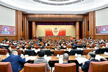 CPPCC members deliver speeches at video conference of fourth session of 13th CPPCC National Committee
