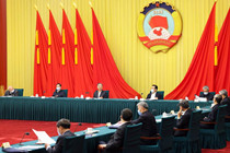 Senior CPPCC members meet at annual session of CPPCC National Committee
