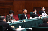 CPPCC members discuss boosting employment in ethnic minority regions