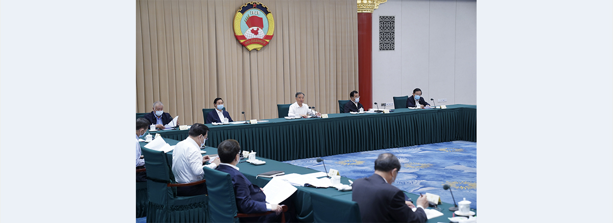 Wang Yang calls for enhancing consultative mechanism