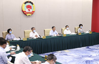 CPPCC members discuss ways to boost multimodal transport