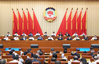 Wang Yang urges enhanced consultation on implementing five-year plan