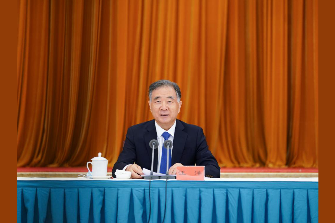 Wang Yang stresses united front's role in China's development