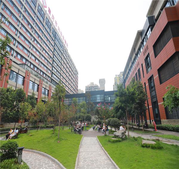 Achievements, prospects of CQHCWC 'Beautiful Hospital' program