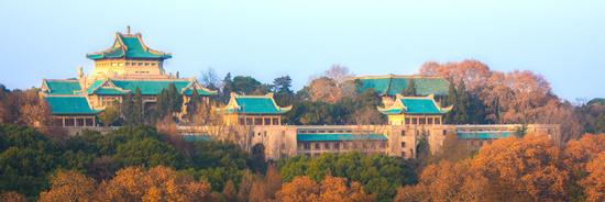 武汉大学1.jpg