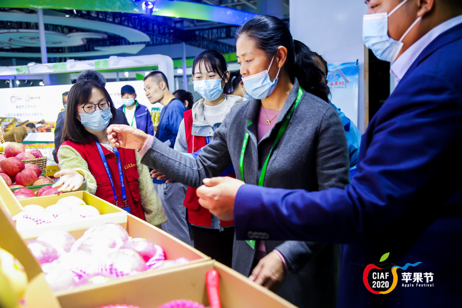 Yantai apple festival concludes with fruitful results