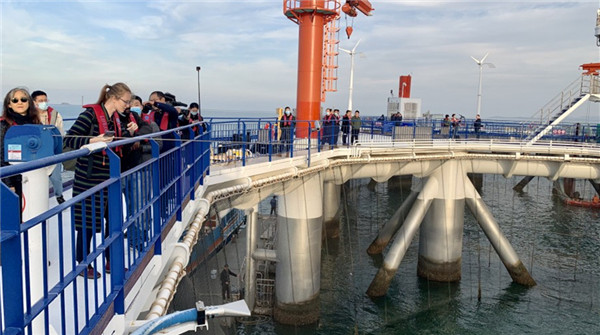 Yantai marine ranch complex welcomes foreign visitors