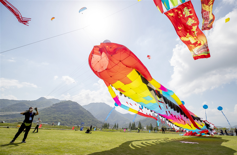 kite contest.jpg