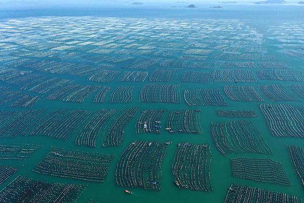 vast sea.jpg