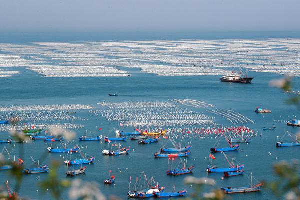 sea farm.jpg