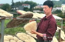 Savor traditional Quzhou favor of dried rice noodles