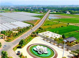 Farm produce takes a ride on the internet in Zhejiang