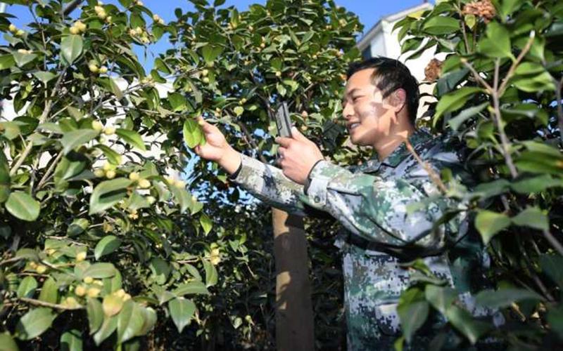Digital economy bolsters common prosperity in Zhejiang