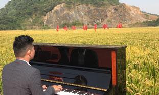 钢琴4-标题图.jpg