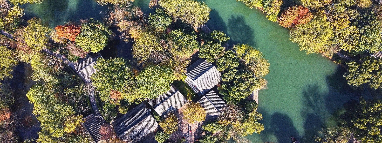 西溪湿地-浙江-1600_600.jpg