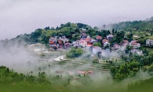 zhejiang ecological.jpg