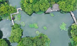 西湖-标题图.jpg