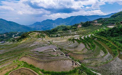 In pics: Yunhe terrace field