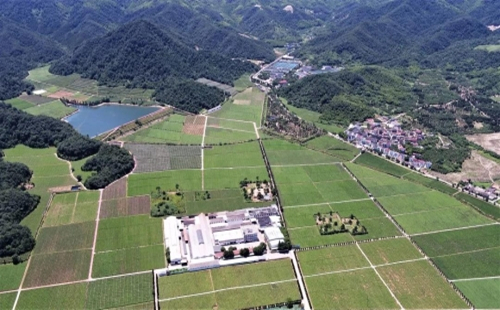 Zhejiang highlights 10 archaeological findings in 2020