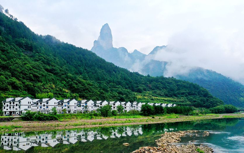 Zhejiang govt report stresses reducing carbon emission