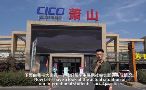 'Beautiful Zhejiang' episode 19: Out of Africa for Zhejiang