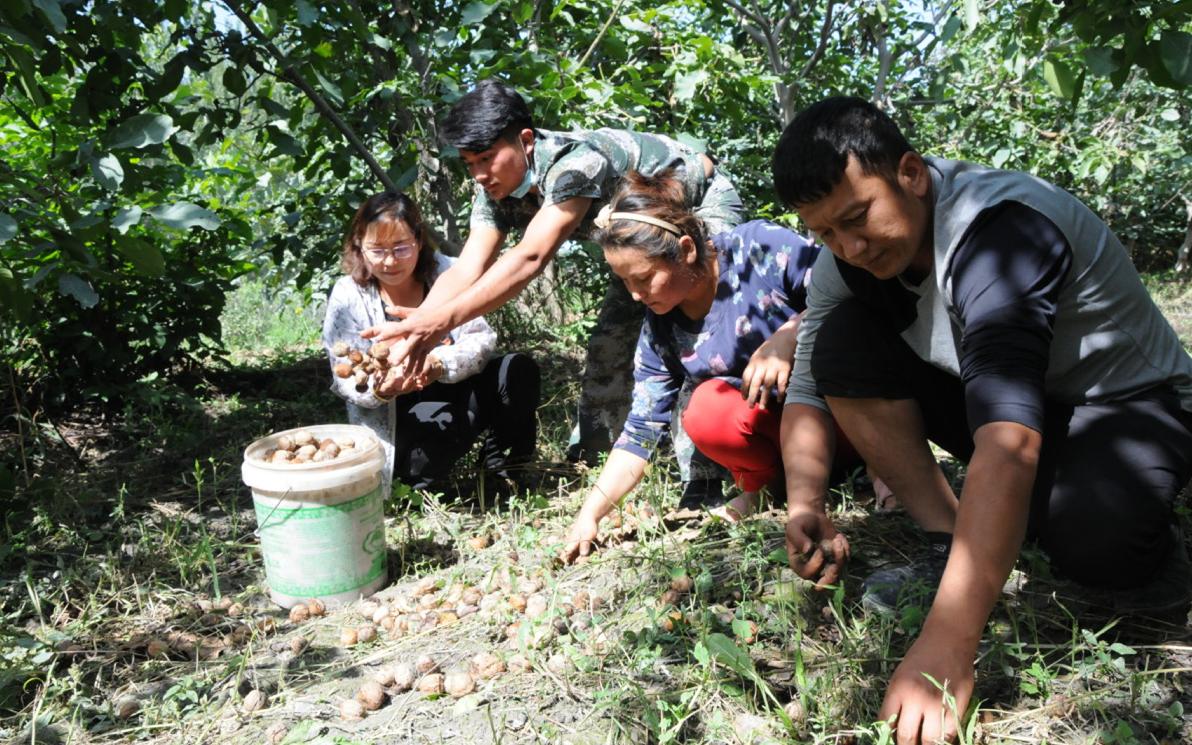 Zhejiang earmarks 2.1b yuan for economic assistance towards Xinjiang