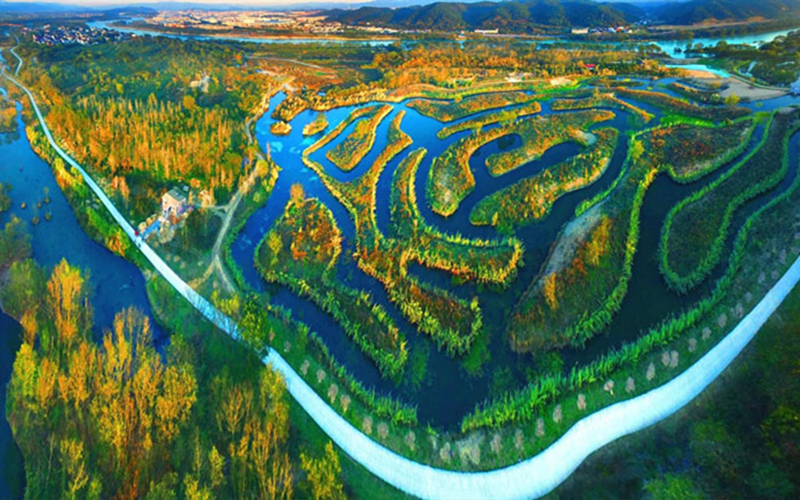 Lure of fireflies adds to attractions of springtime Lishui