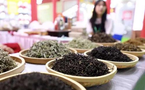 Zhejiang experience showcased at tea expo
