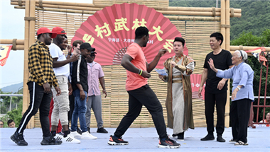 Martial arts play role in rural revitalization