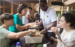 Foreigners experience rural culture in Songyang
