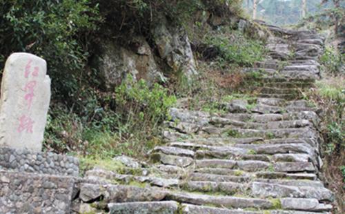 Ancient pathways
