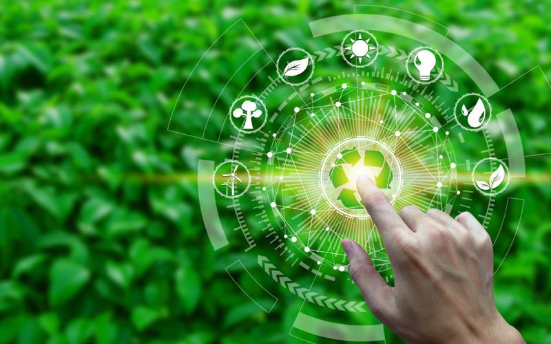 Zhejiang enterprises pitch in direct trading of green power