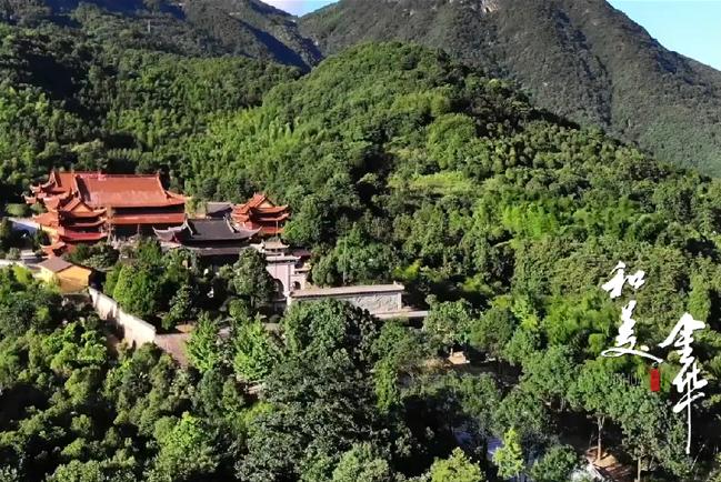 Faithful, harmonious and beautiful Jinhua